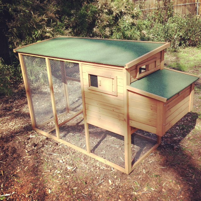 For The Birds: Assembling Our Backyard Chicken Coop