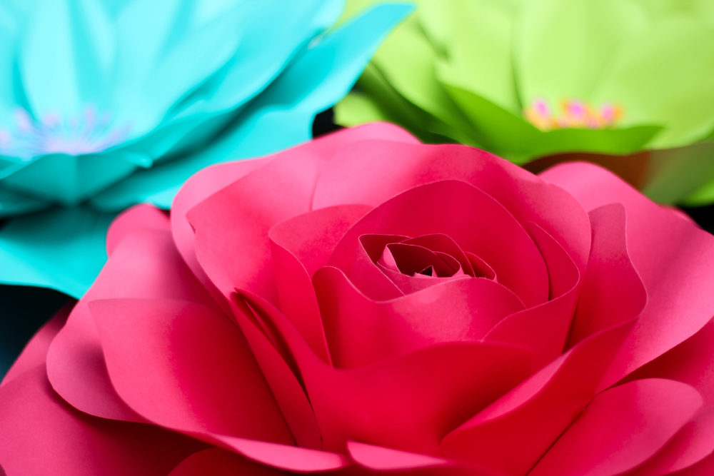 Forever Petals by Vee: More Than Just Paper