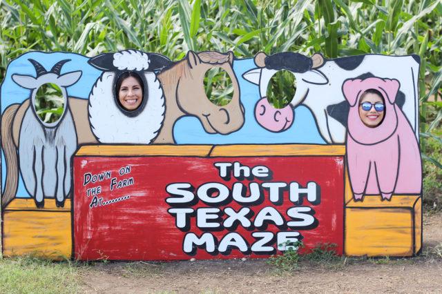 South Texas Maize Hondo Some Silliness