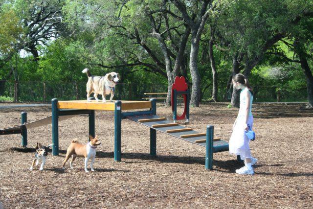 McAllister Park San Antonio Dog Parks